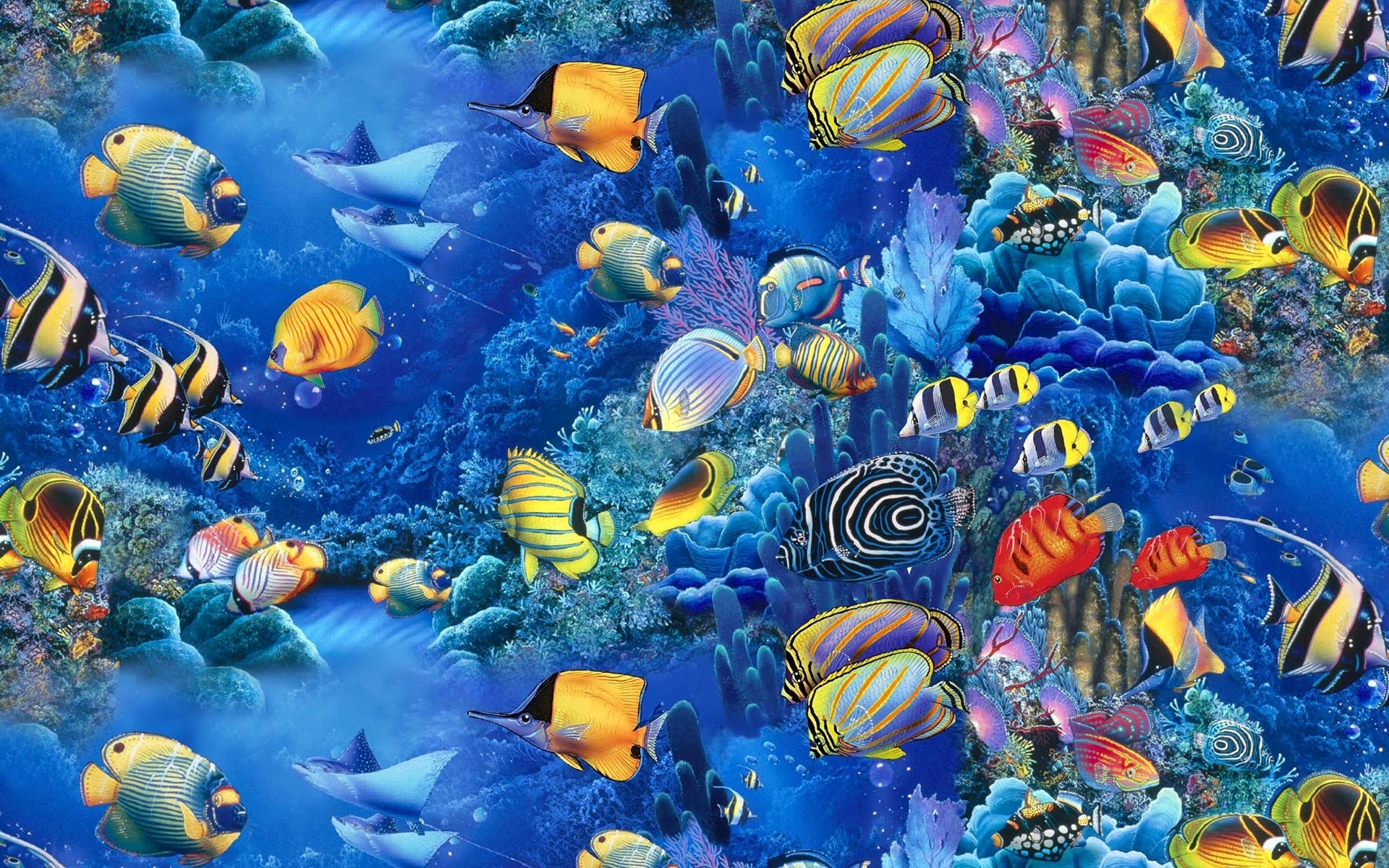 Fish Wallpaper 1920x1200