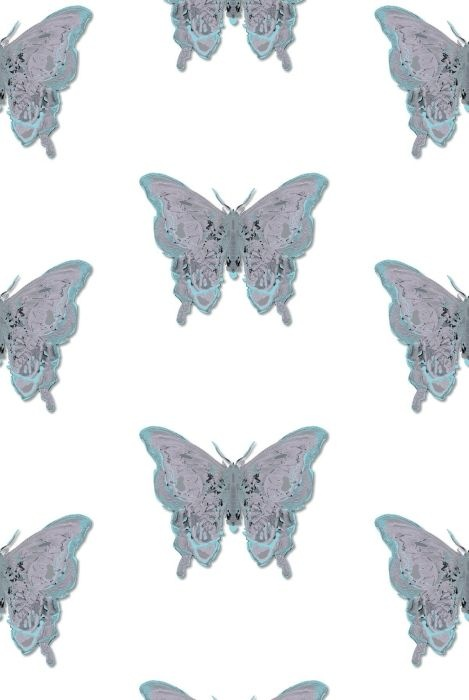 Timorous Beasties Butterfly wallpaper Timorous Beasties Pinterest 469x700
