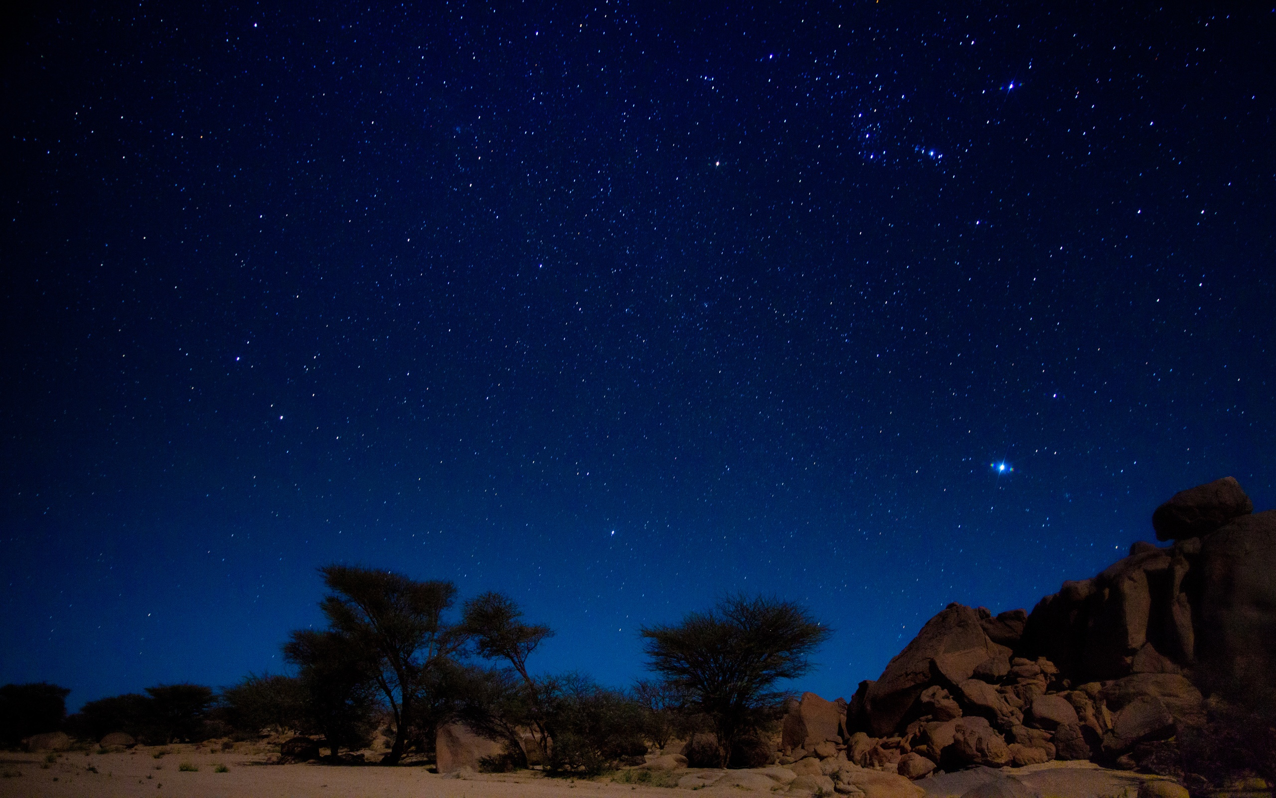 Stars over the desert wallpaper   1050574 2560x1600