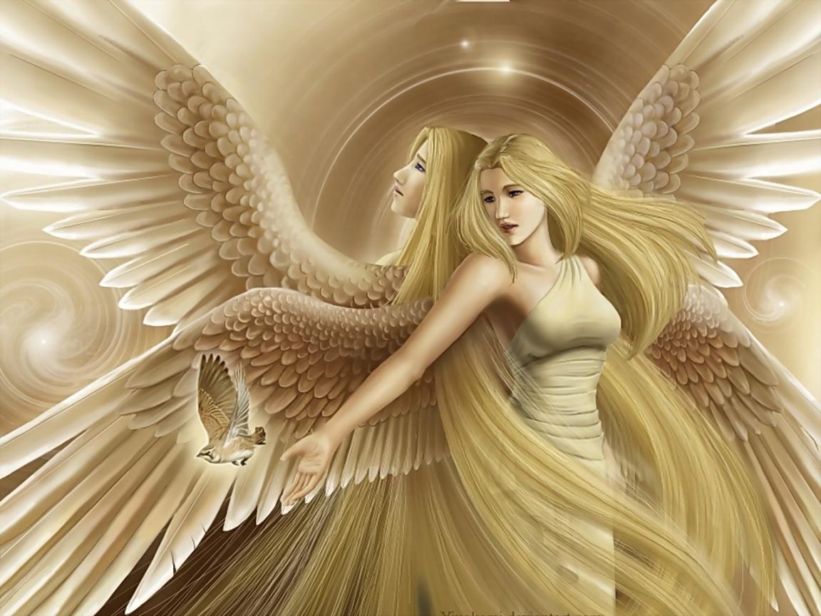 48 3d Angels Wallpaper On Wallpapersafari