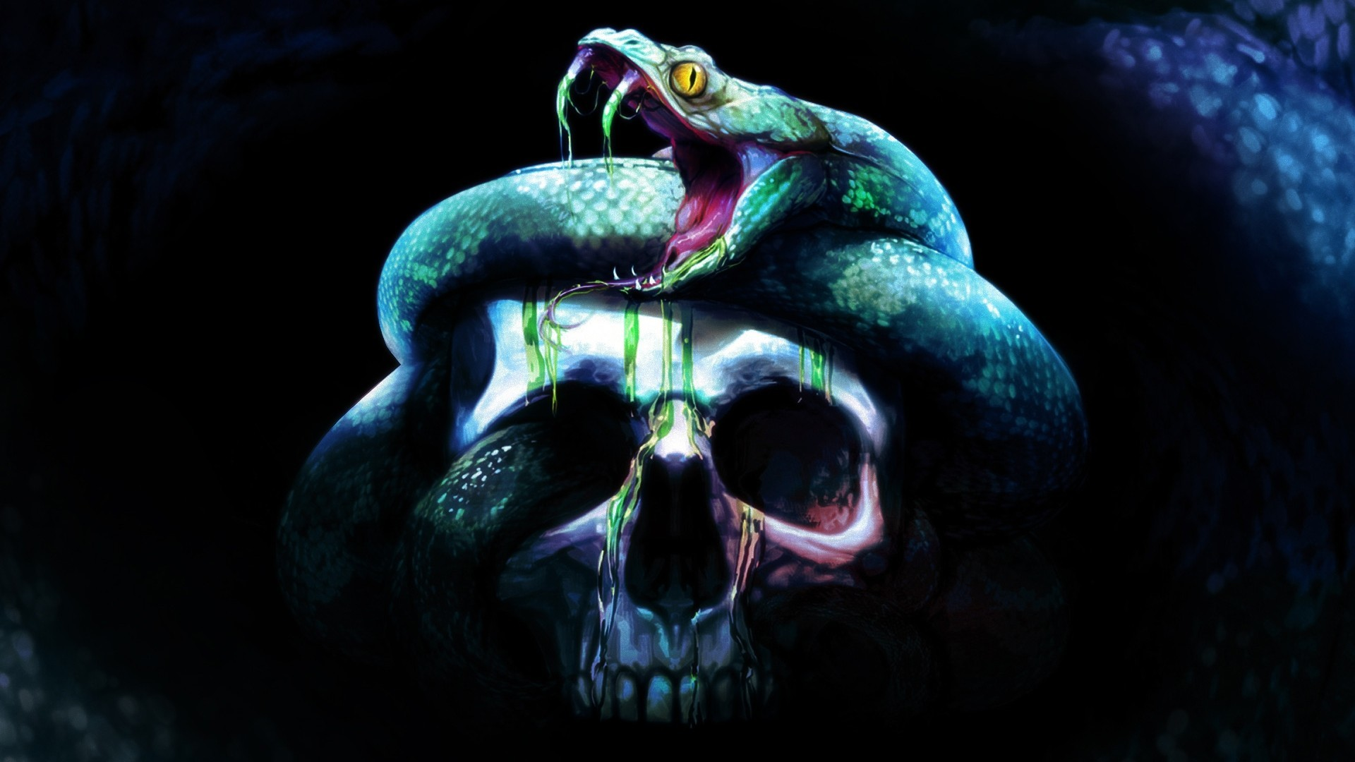 Wallpaper skull skull fear snake background wallpapers miscellanea 1920x1080