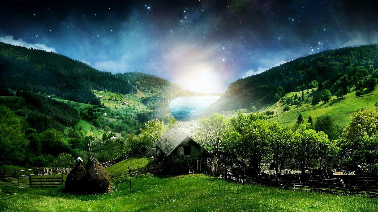 Beautiful Moonlight Green Full HD Jungle Nature Wallpaper Widescreen 1600x900