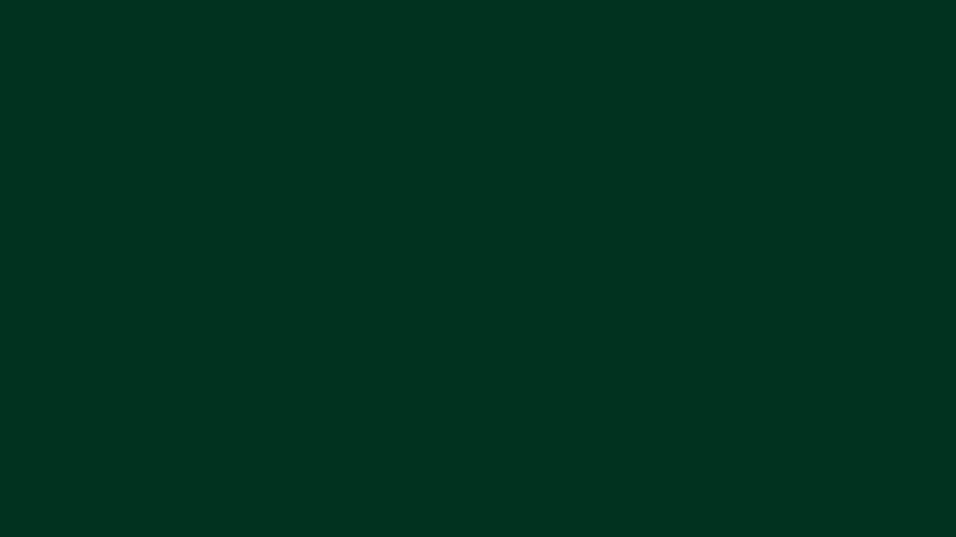 1366x768 resolution Dark Green solid color background view and 1366x768