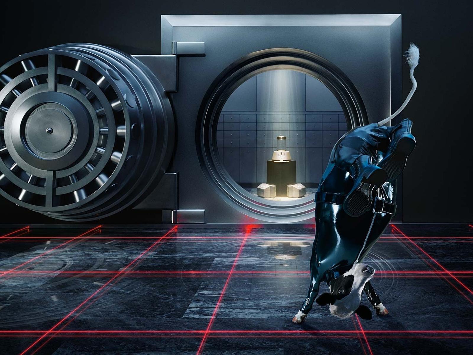 Safe Vault Cow Jump Spy Laser WTF wallpaper 1600x1200 125720 1600x1200