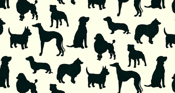 I Love Dogs Wallpaper : I Love Dogs Wallpaper - WallpaperSafari
