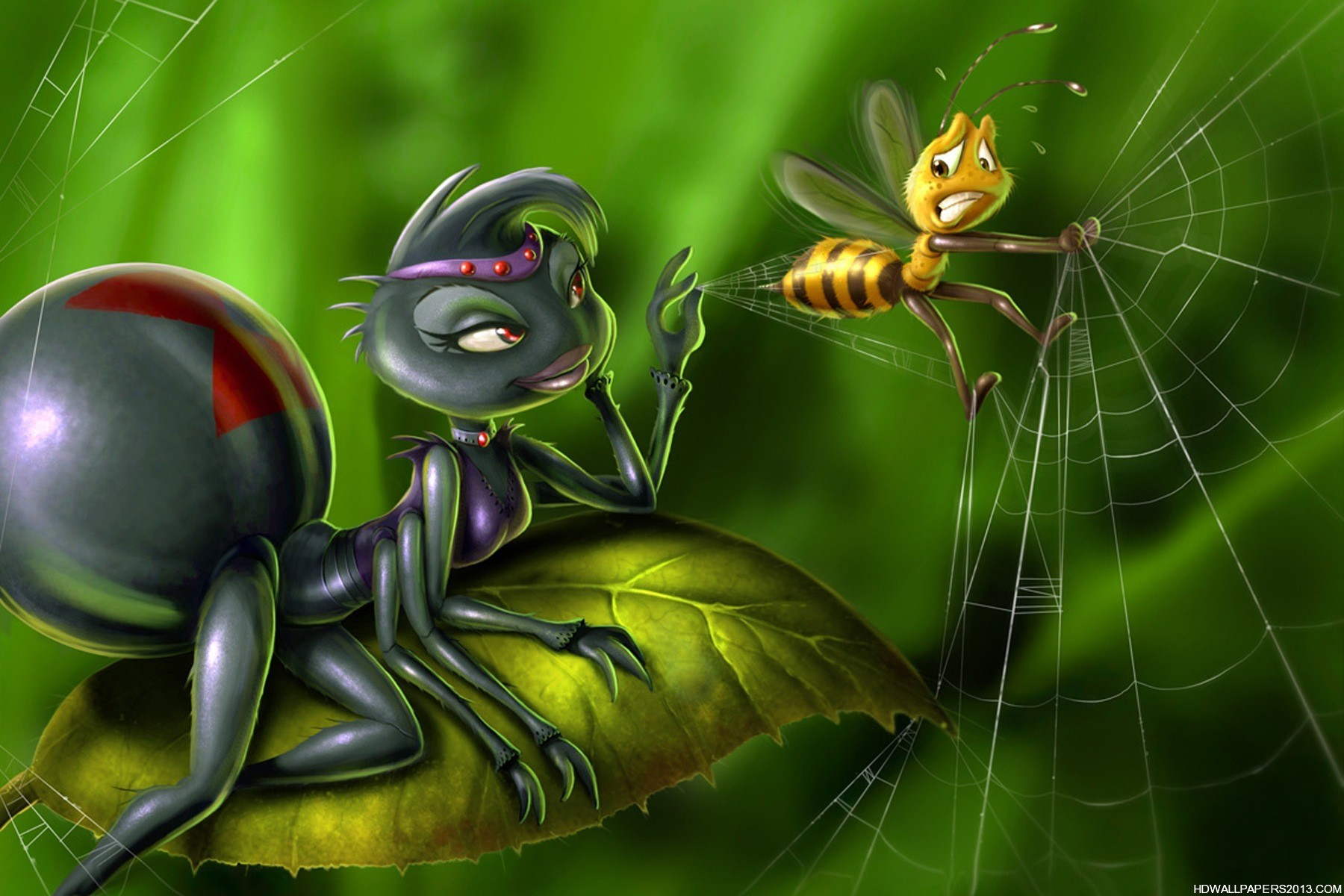 spider and bee 3d wallpaper hd wallpapers spider and bee 3d wallpaper 1800x1200