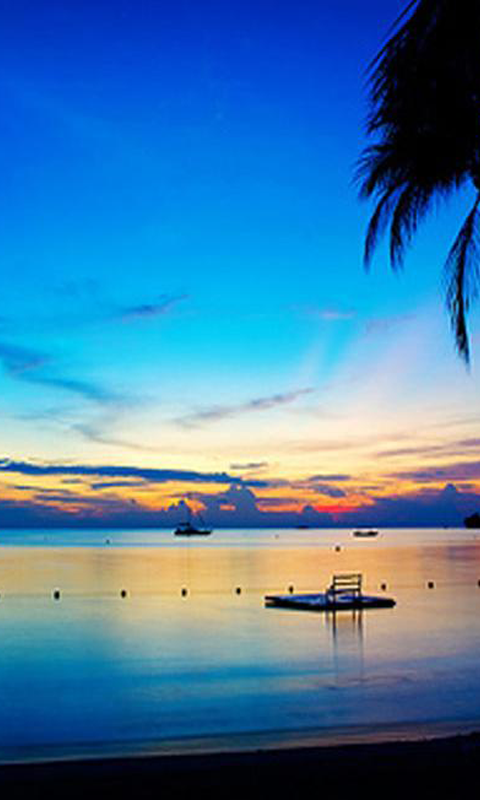 Jamaica Beaches Wallpapers   screenshot 480x800