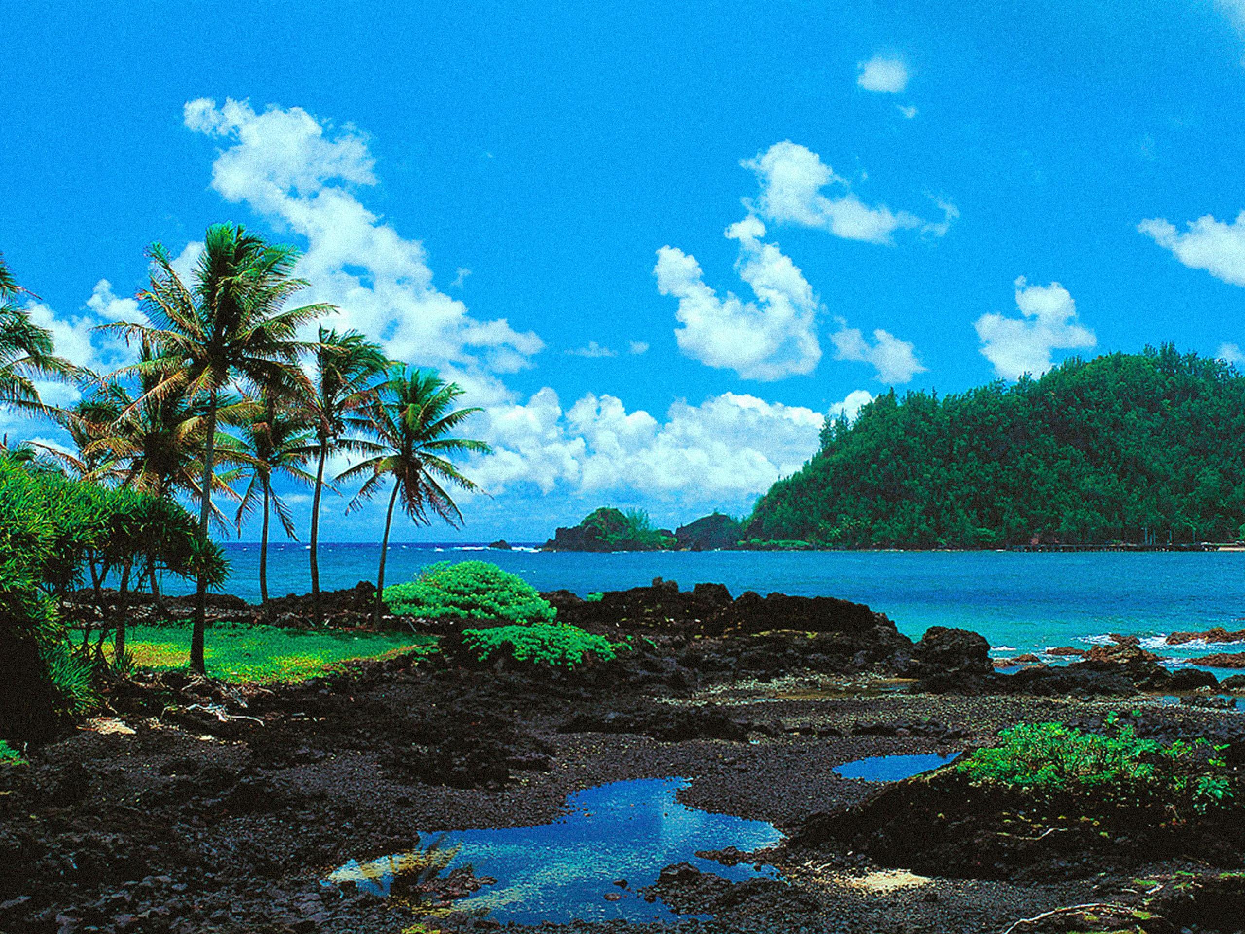 Maui hawaii desktop wallpaper wallpapersafari for Wallpaper immagini hd