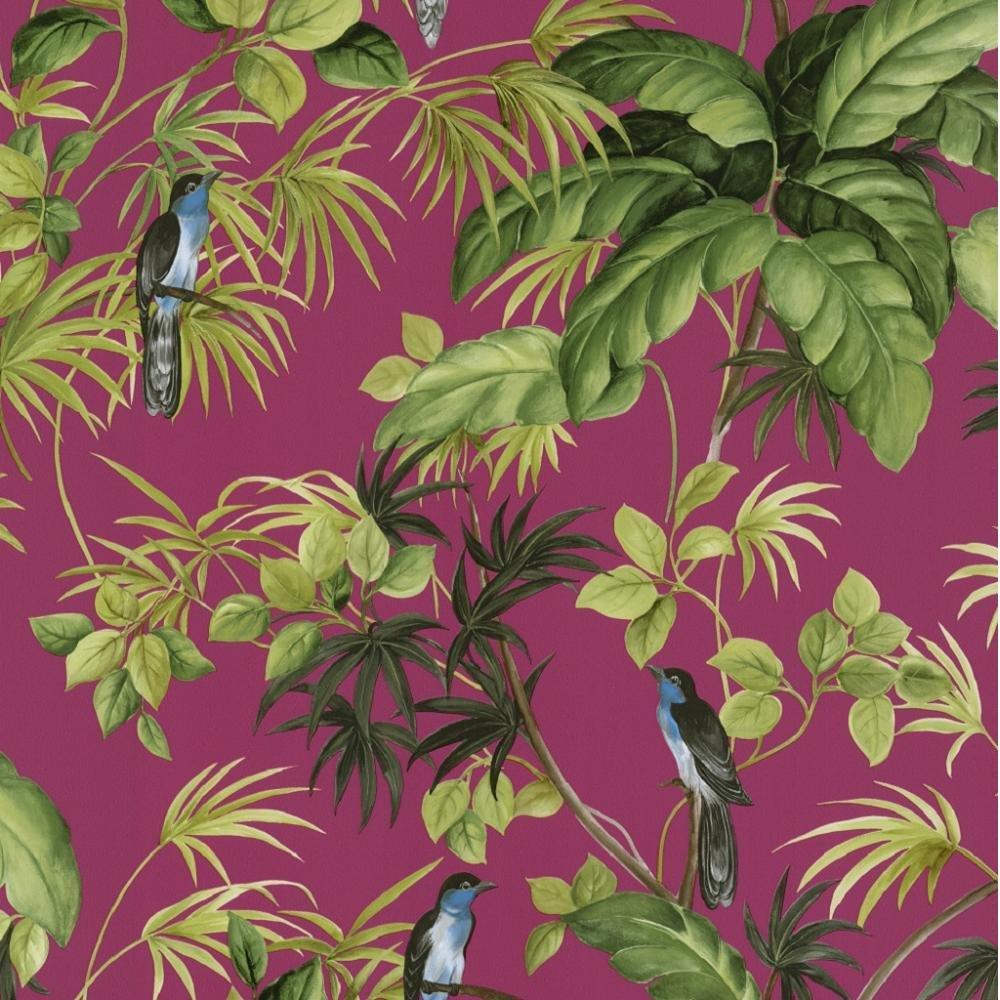 International Tropical Exotic Birds Trees Leaves Wallpaper 05550 30 1000x1000