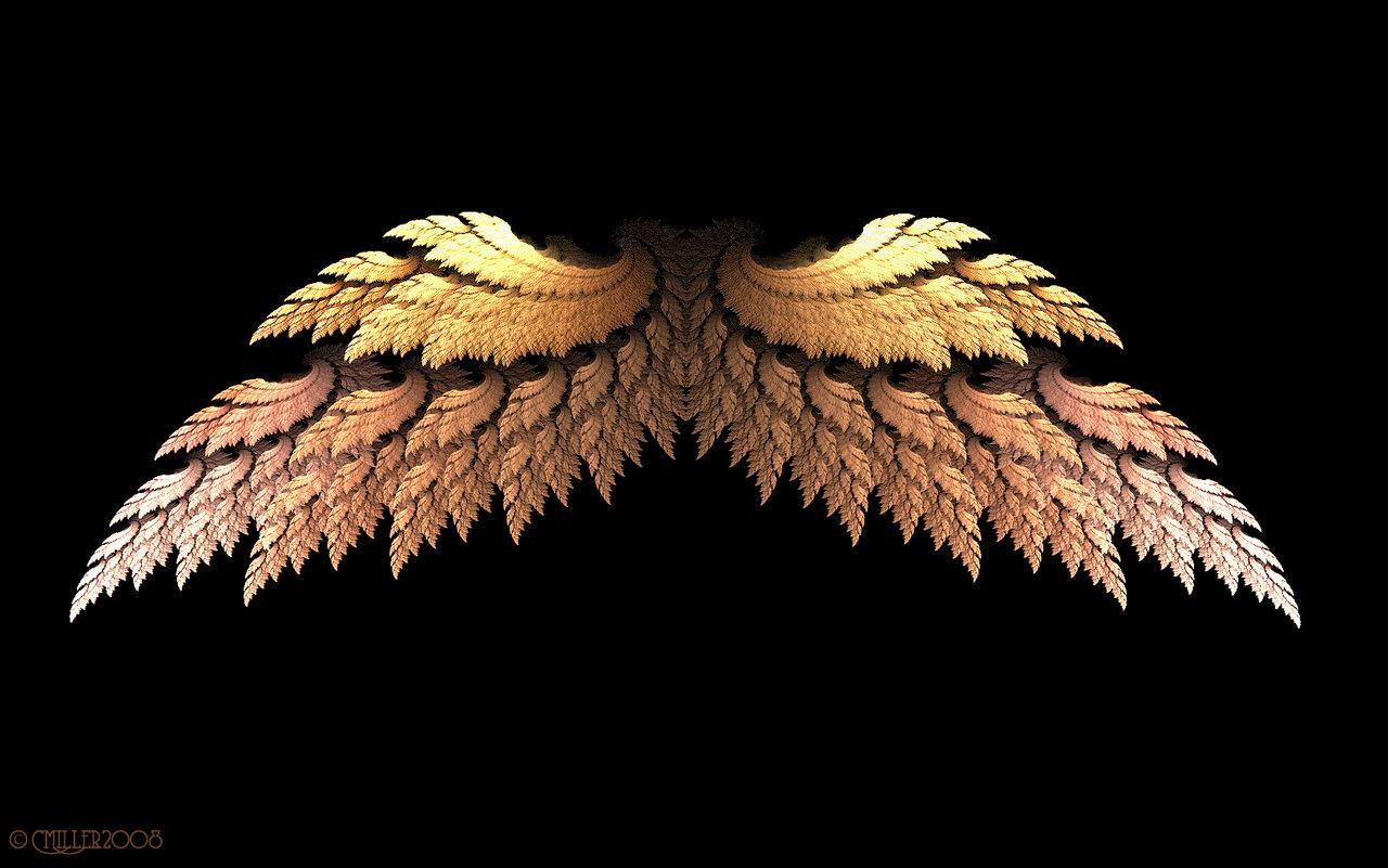 Golden Angel Wings by Shadoweddancer 1280x801
