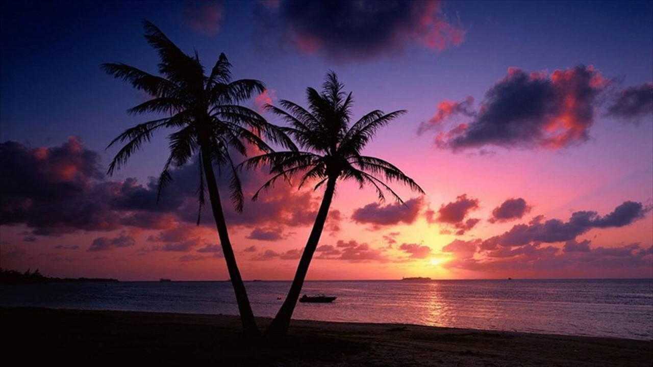 Beach Sunset Live Wallpaper Goa India 1280x720