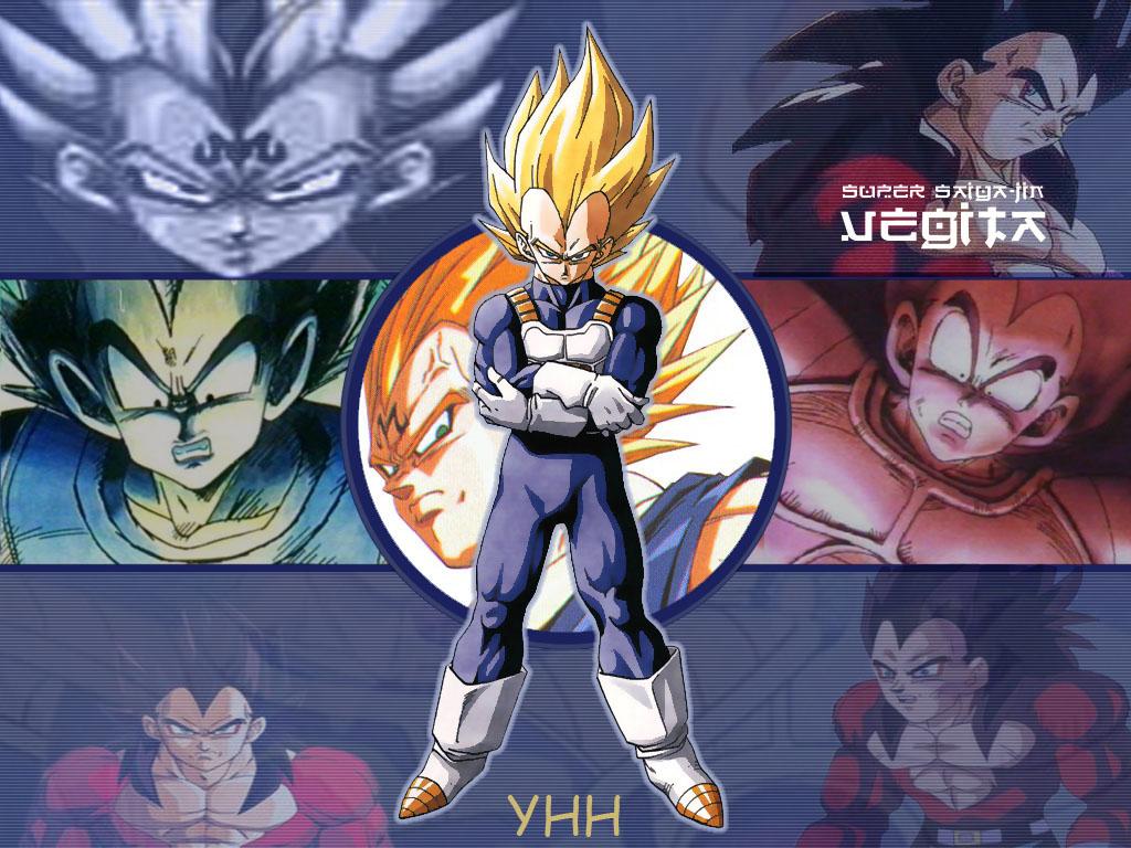 Dragon Ball Z Majin Vegeta DBZ desktop wallpapers Download DBZ