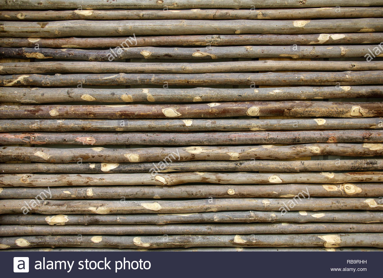 Old fence made from tree branches Wall of twigs as background or 1300x943