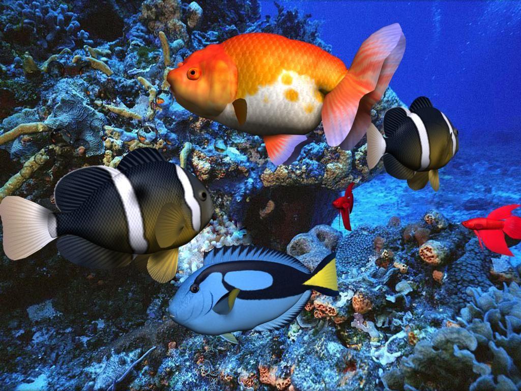 3D Screensavers 3D Aqua Screensaver 286 download for 1024x768