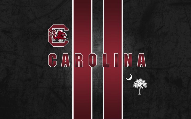 South Carolina Gamecocks   Football Sports Background Wallpapers 800x500