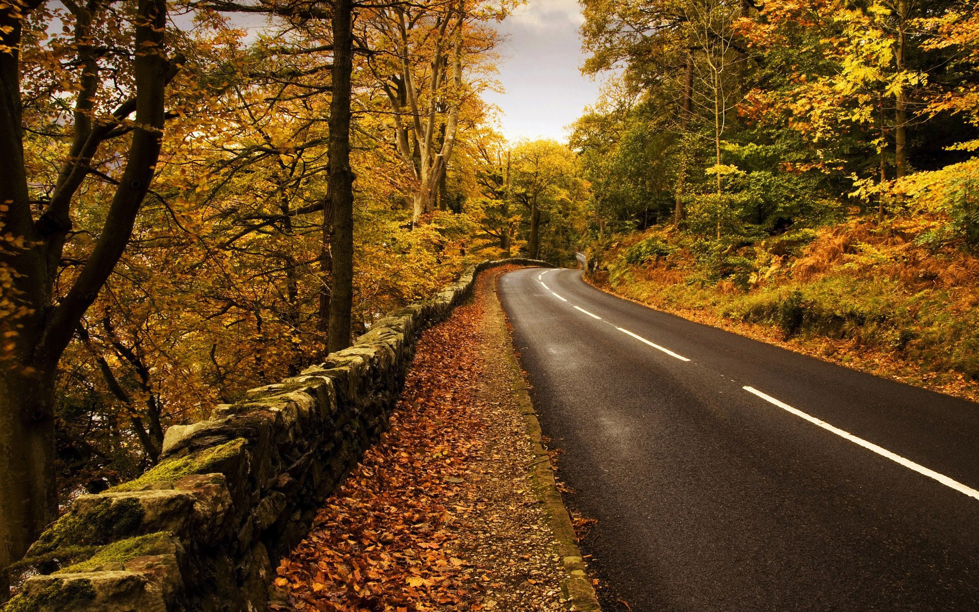 Free Download Mountain Road In The Fall Wallpapers Hd 413490 1920x1200 For Your Desktop Mobile Tablet Explore 37 1920 X 1200 Autumn Wallpaper 1920x1200 Hd Wallpaper Widescreen Wallpapers High