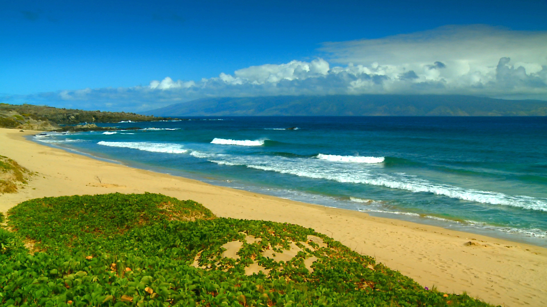 Hawaii Beaches wallpaper 43041 1920x1080