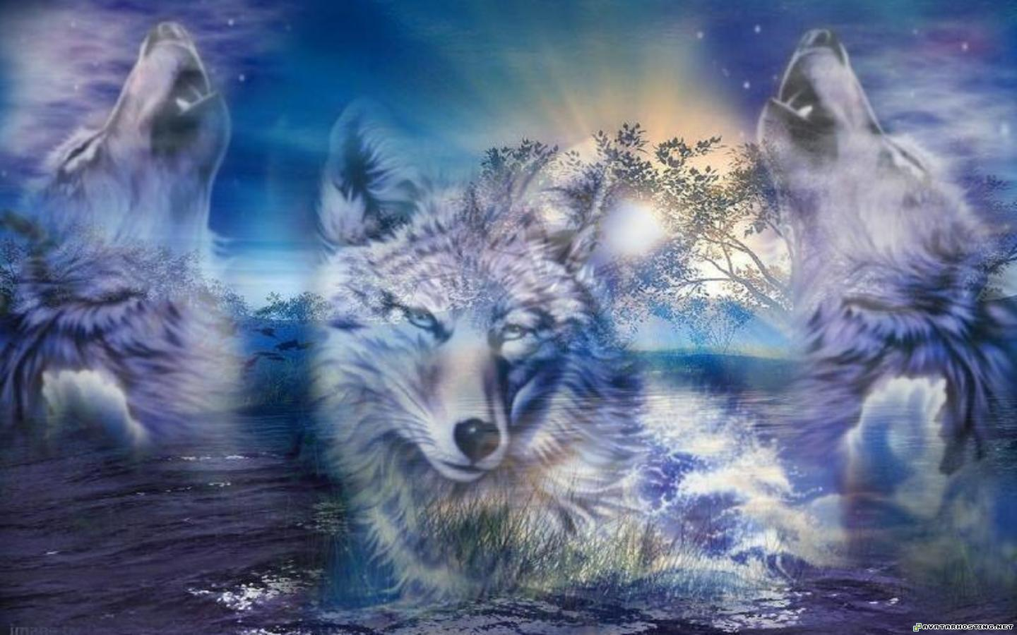 Wallpapers Wolves 1440x900