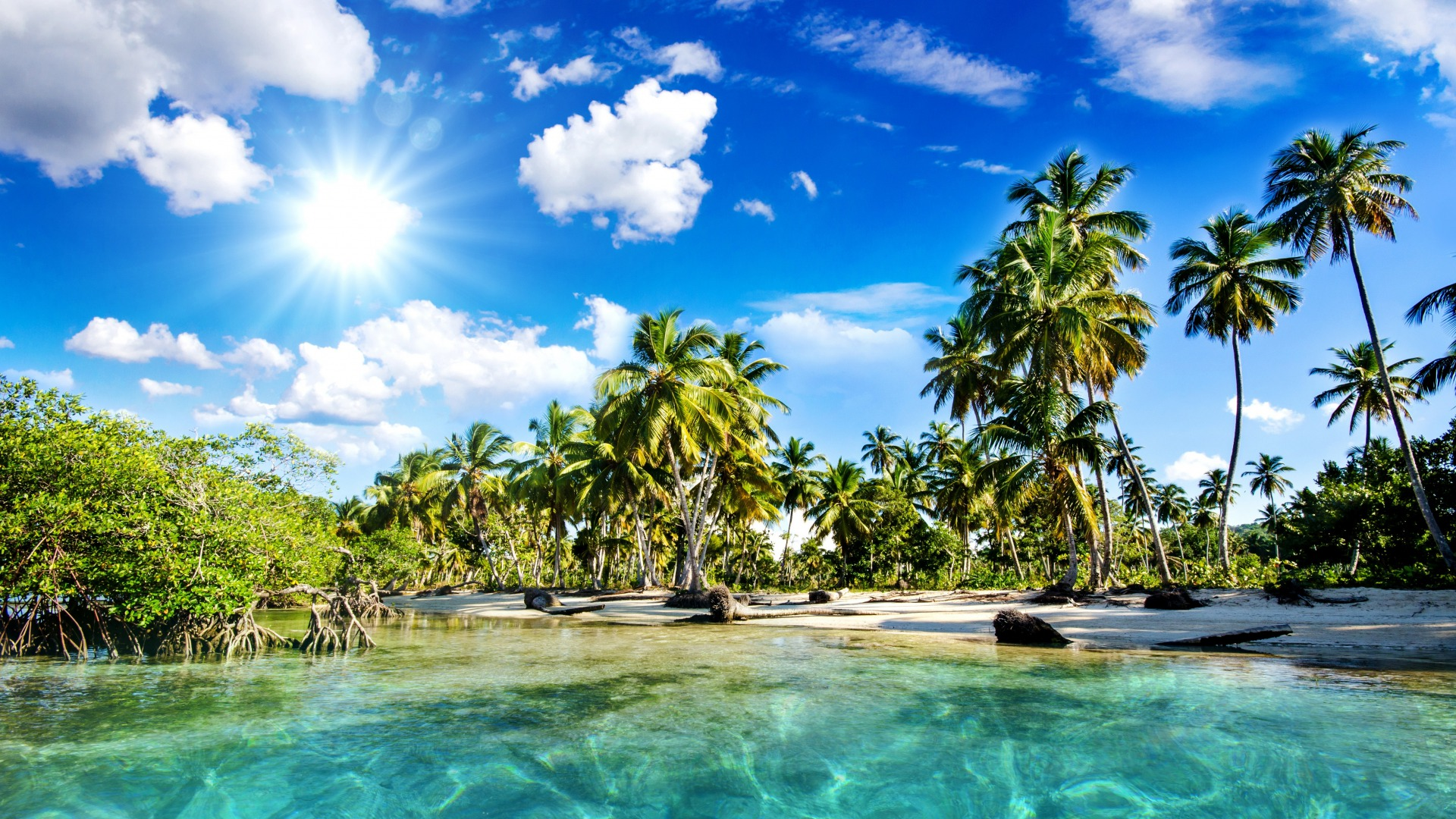 Tropical Beach Wallpapers Pictures Images 1920x1080
