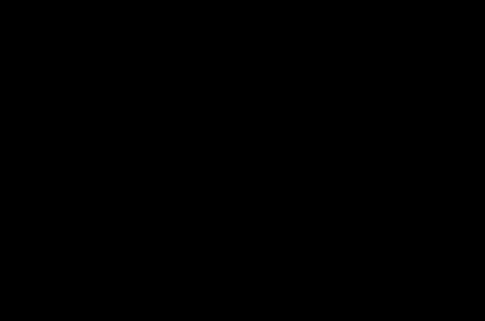 black background black background black background black background 1600x1062