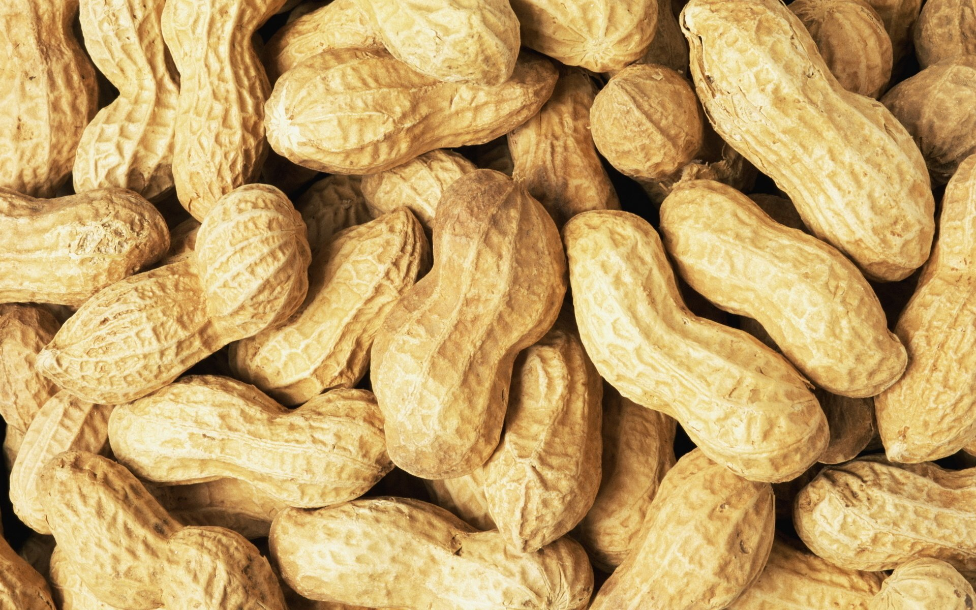 How to Cope With a Peanut Allergy in China the Beijinger 1920x1200