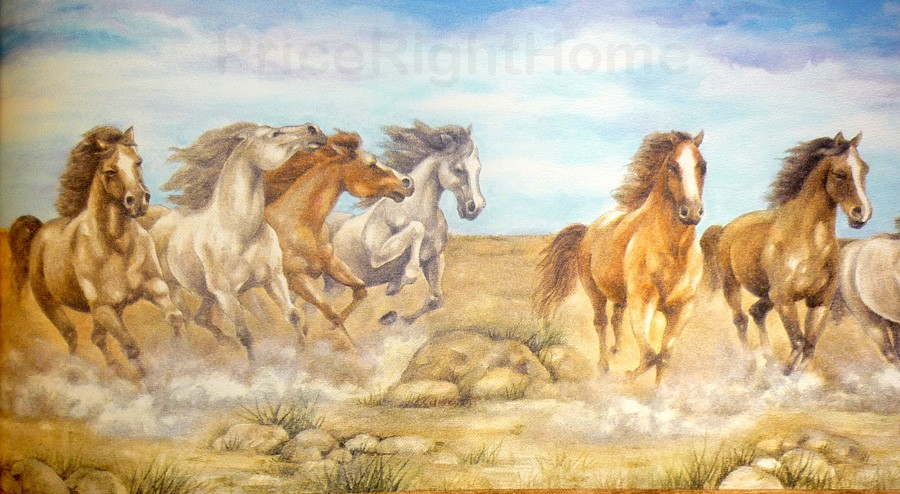 Free Download Horses Wallpaper Border 5m High Quality Horse Themed