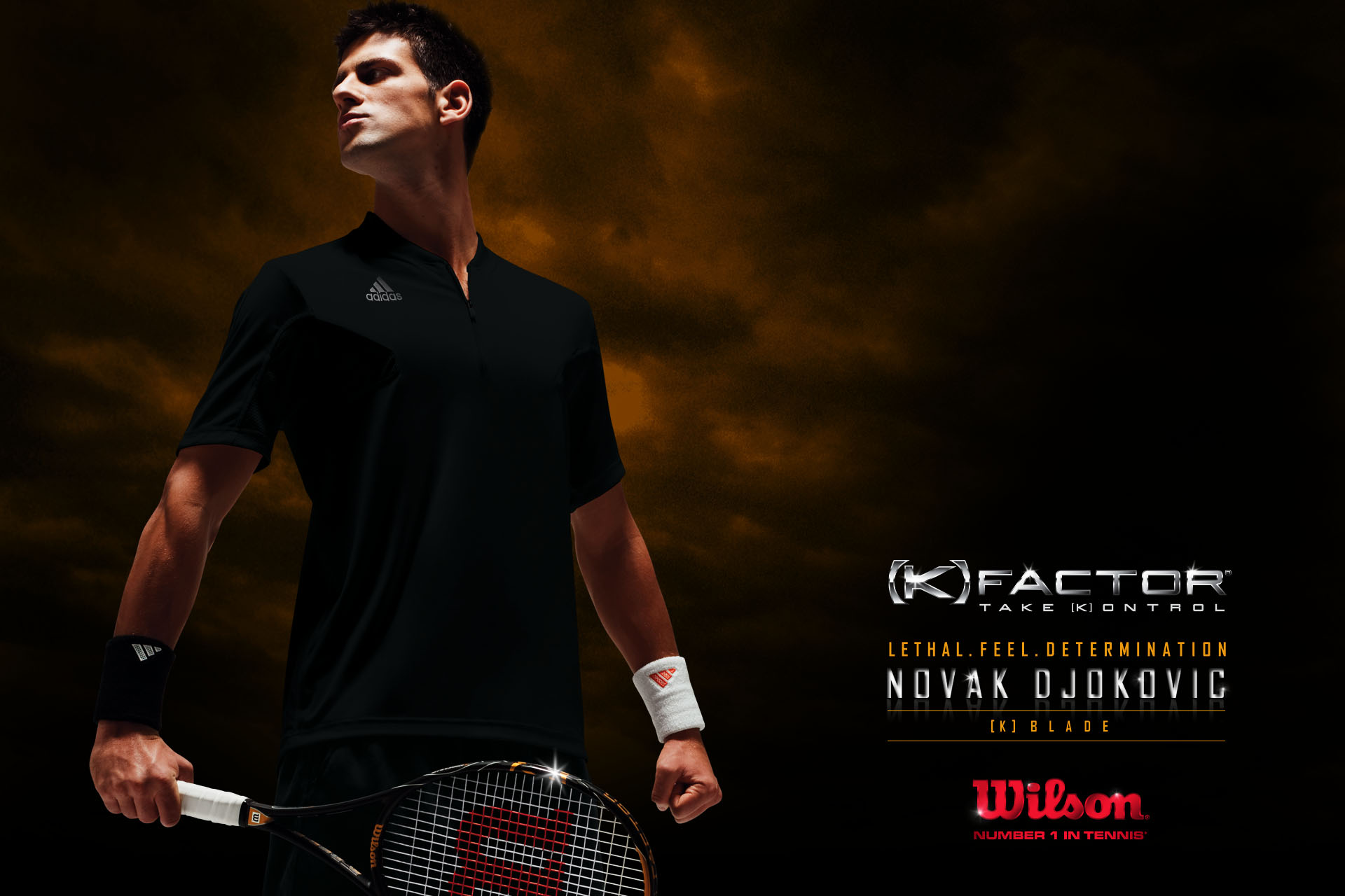 Tennis Novak Djokovic wallpaper Sport Wallpapers 1920x1280