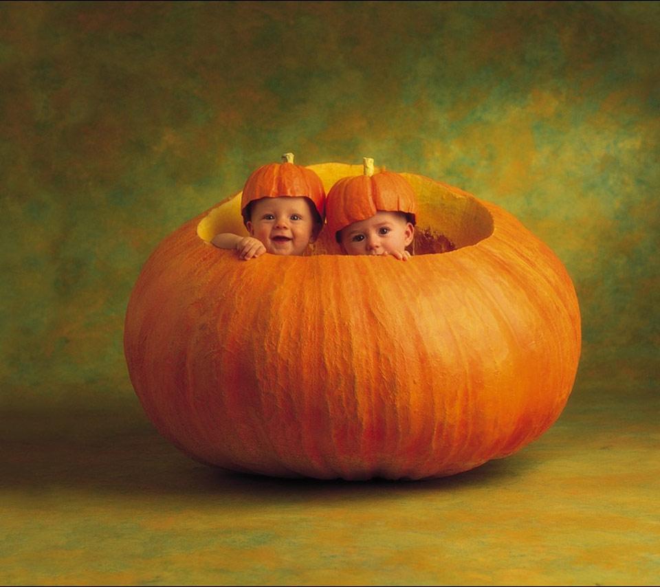 Cute Pumpkin Wallpaper   HD Wallpapers 960x854