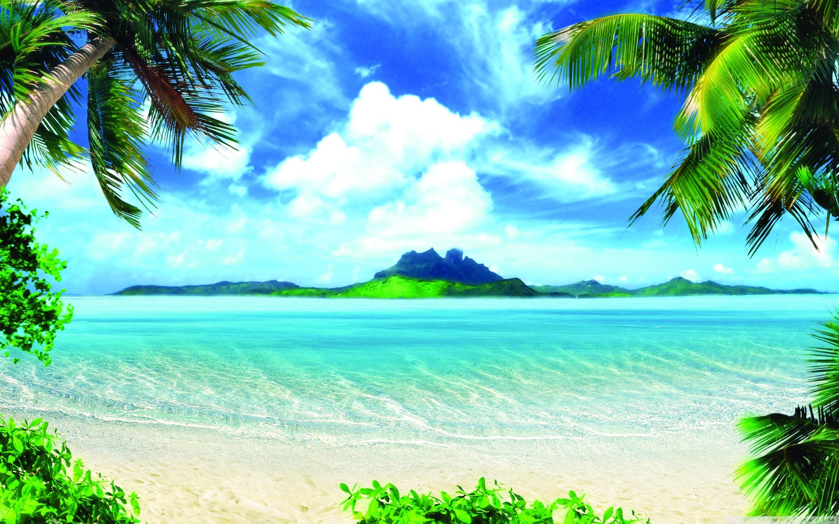 Summer Vacation Wallpapers   Top Summer Vacation Backgrounds 2880x1800