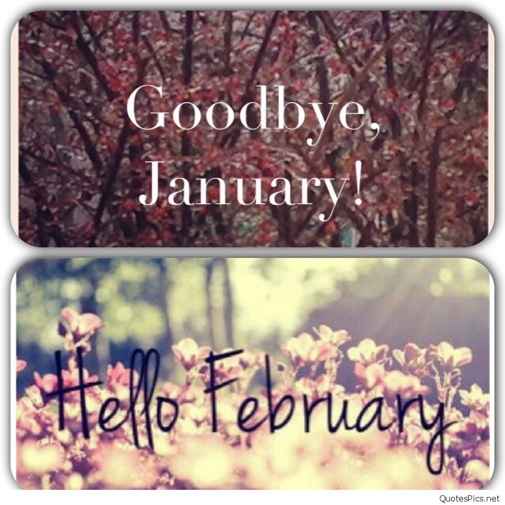 Hello February Wallpaper wwwimgkidcom   The Image Kid 1000x999