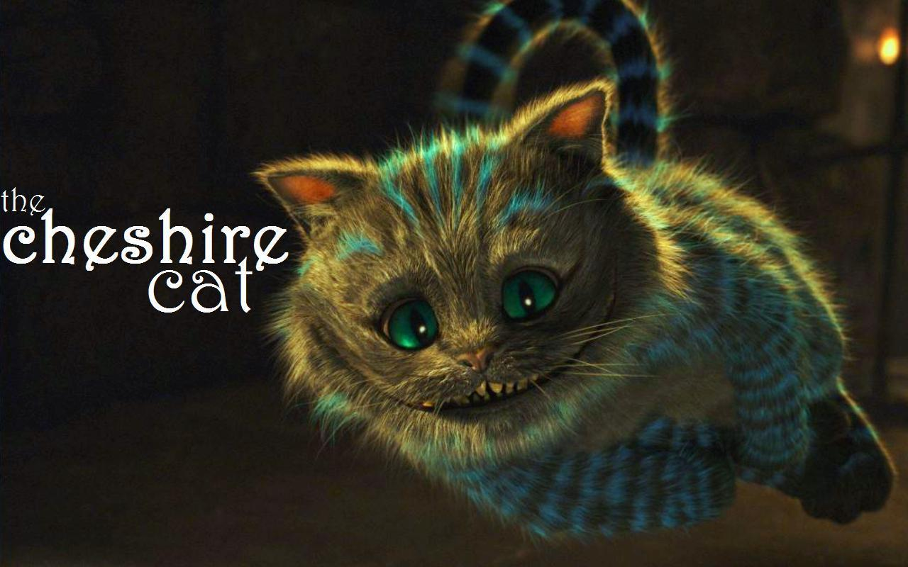 My Top Collection Cheshire cat wallpaper 1280x800