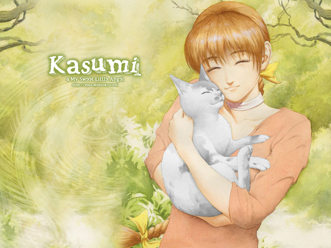 games kasumi dead or - photo #12
