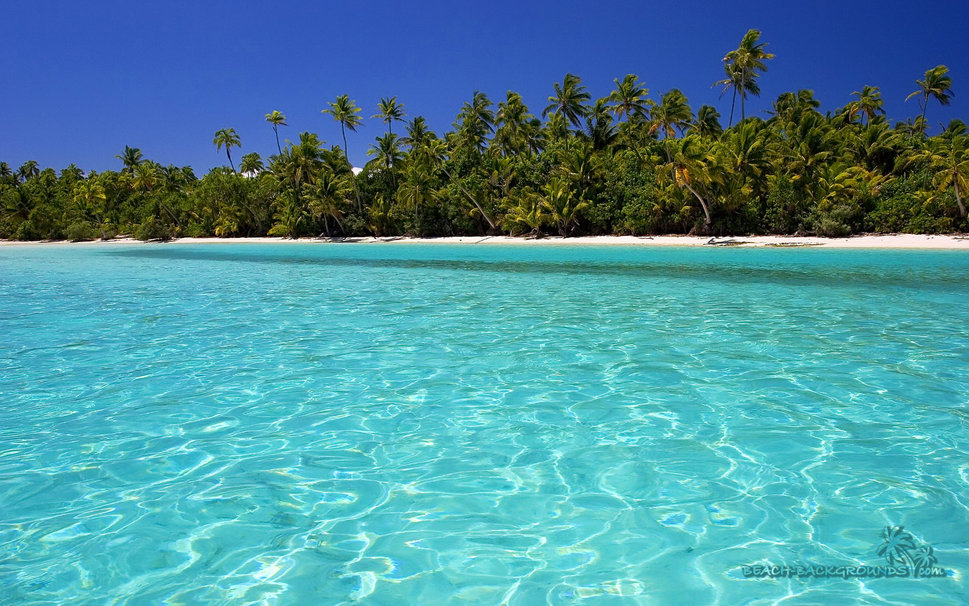 backgrounds tropical crystal clear wallpaper   ForWallpapercom 969x606
