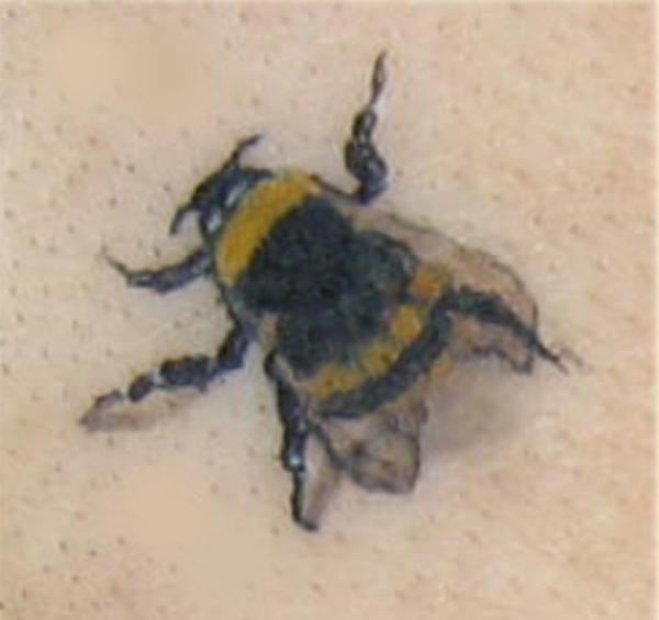 Bumble Bee 600x565