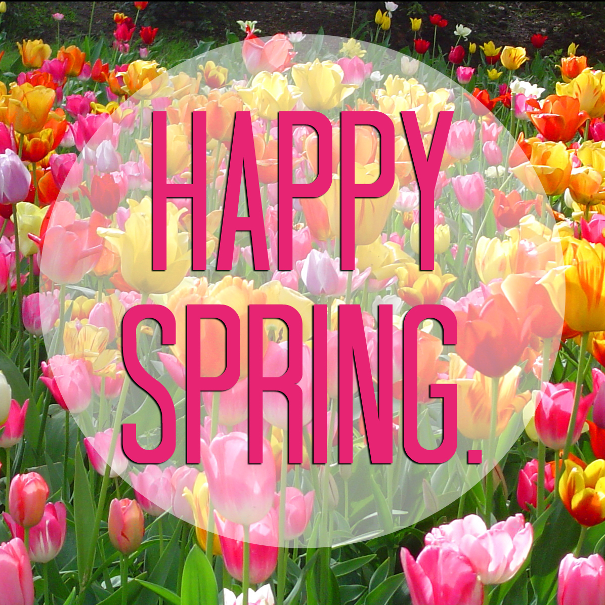 Happy Spring Day Amazing Wallpapers 1196x1196