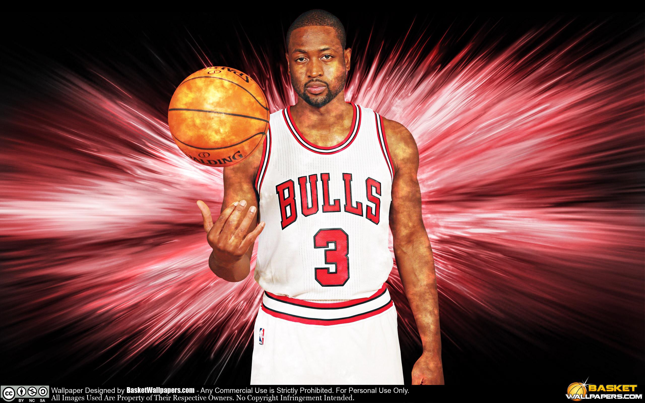 Dwyane Wade Chicago Bulls 2016 Wallpaper Basketball Wallpapers 2560x1600