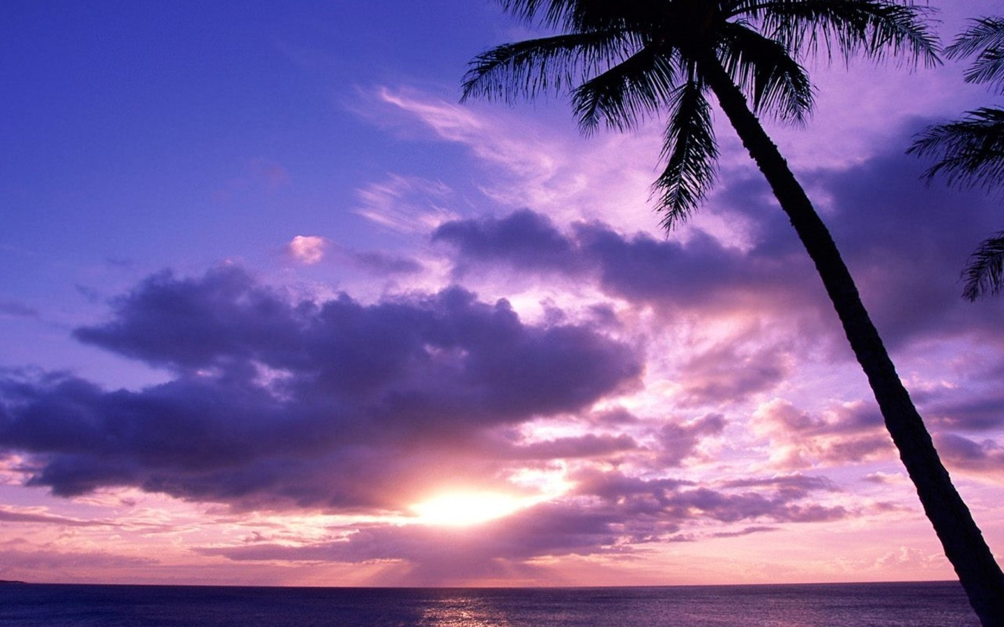 HQ Paradise Island Landscapes Sunset 1 Wallpaper   HQ Wallpapers 1440x900