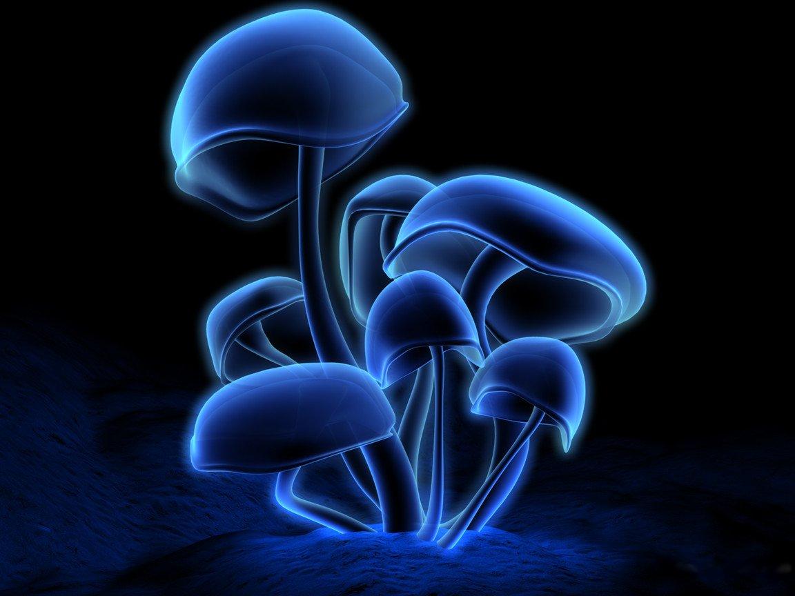 Neon Blue Wallpaper   LiLzeu   Tattoo DE 1152x864