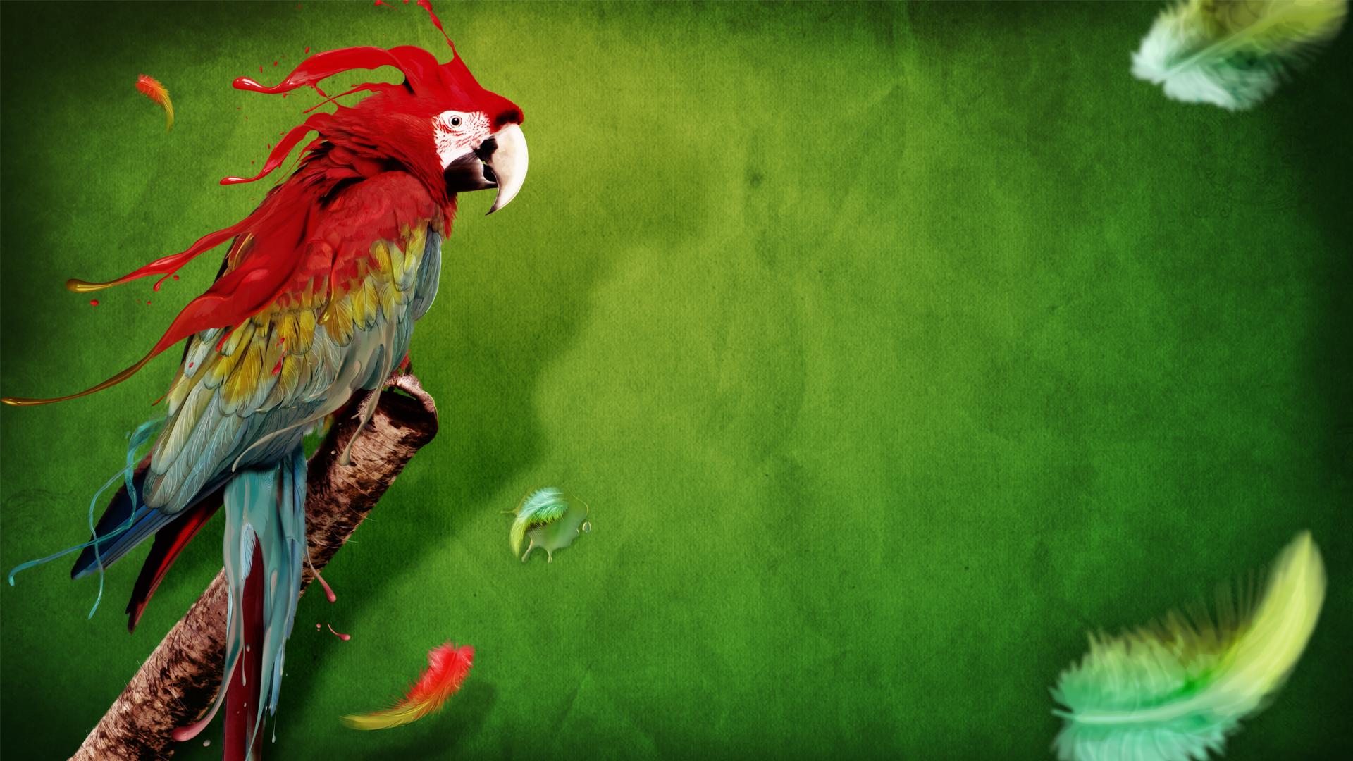 splash of color hd - photo #33