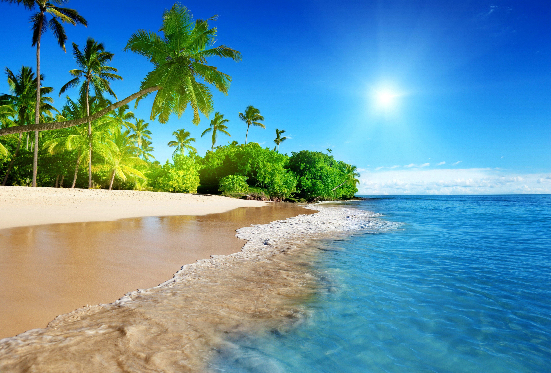 sunshine beach coast tropical paradise blue sea sky emerald wallpaper 5320x3603