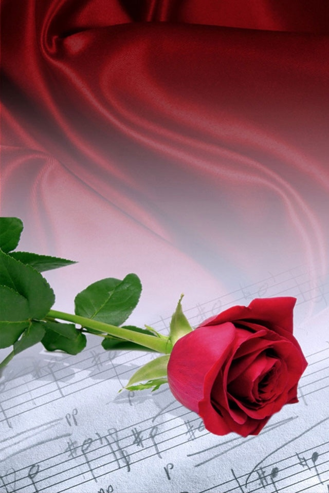 free iphone wallpapers hd rose music iphone wallpapers 640x960