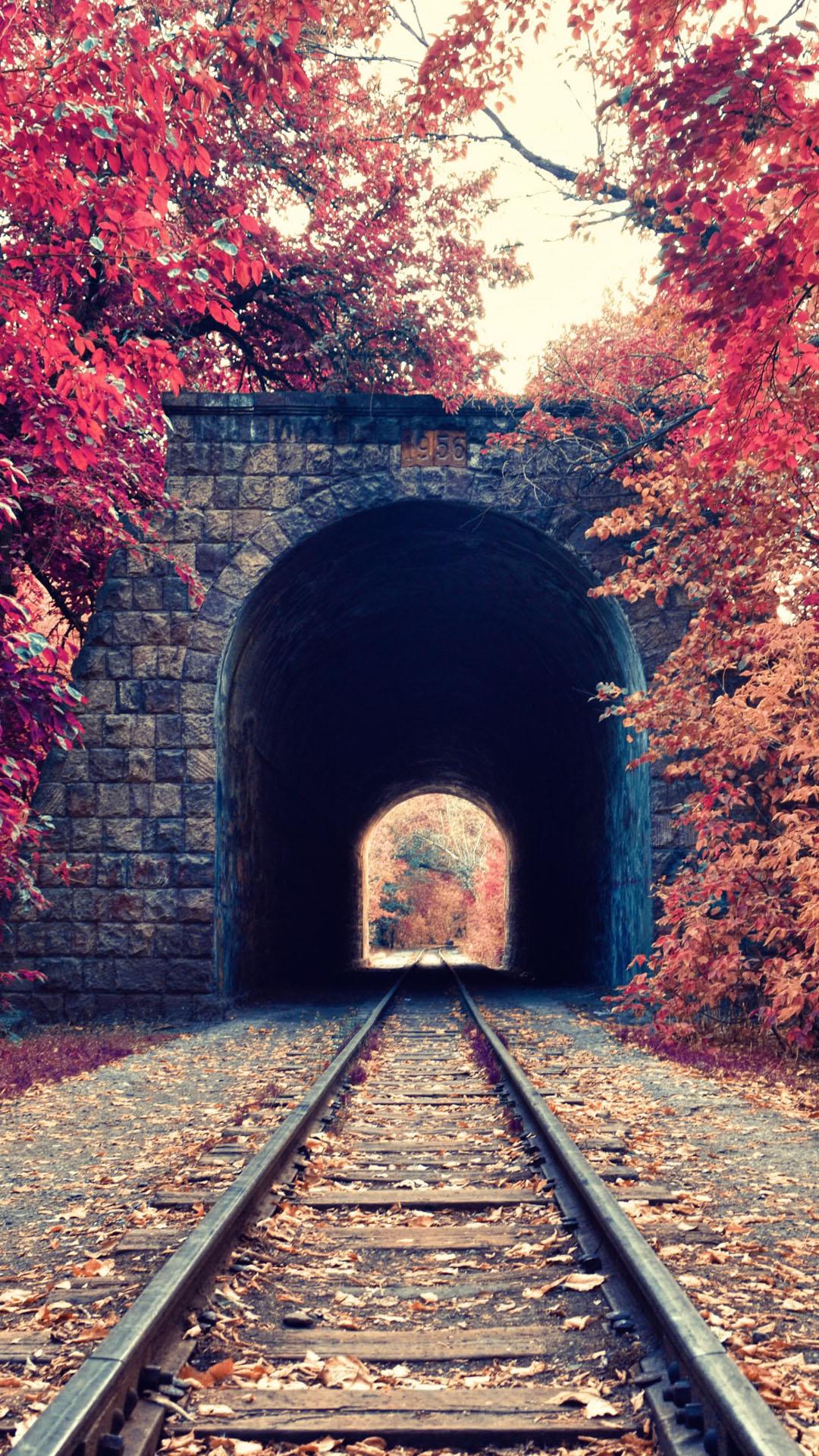 Autumn Train Tunnel Red Tree Leaves iPhone 6 Plus HD Wallpaper iPod 1080x1920