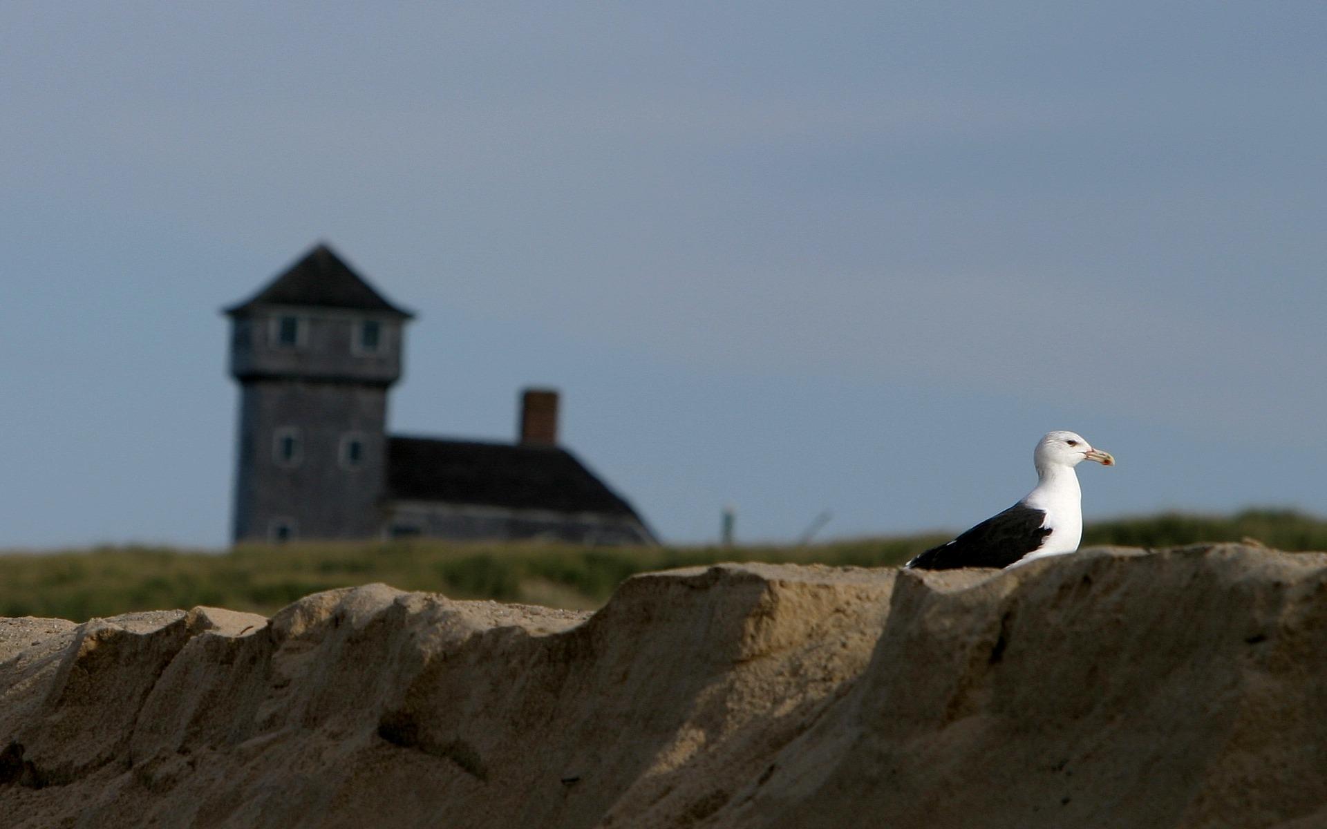 Photo prise Provincetown Cape Cod la Flickr   Photo Sharing 1920x1200