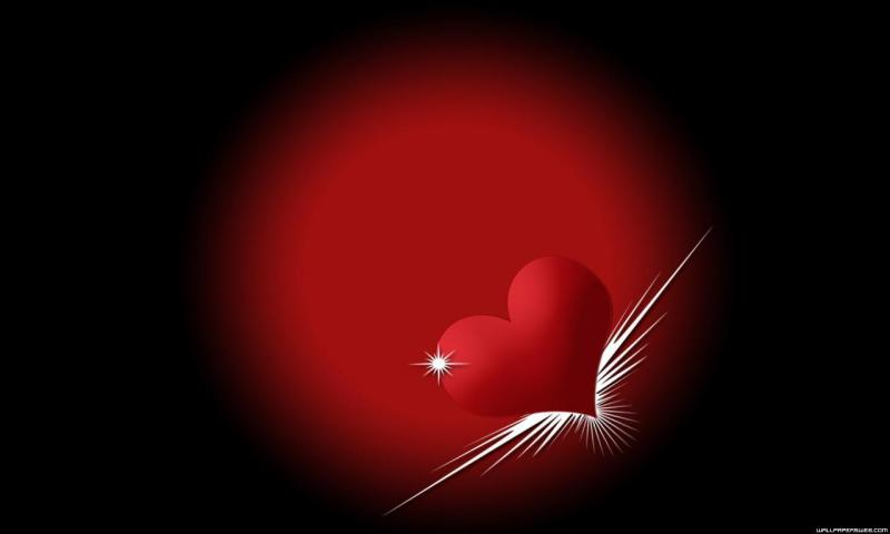 Love HD Wallpapers for all resolution HD 800x480 Love Wallpapers 800x480