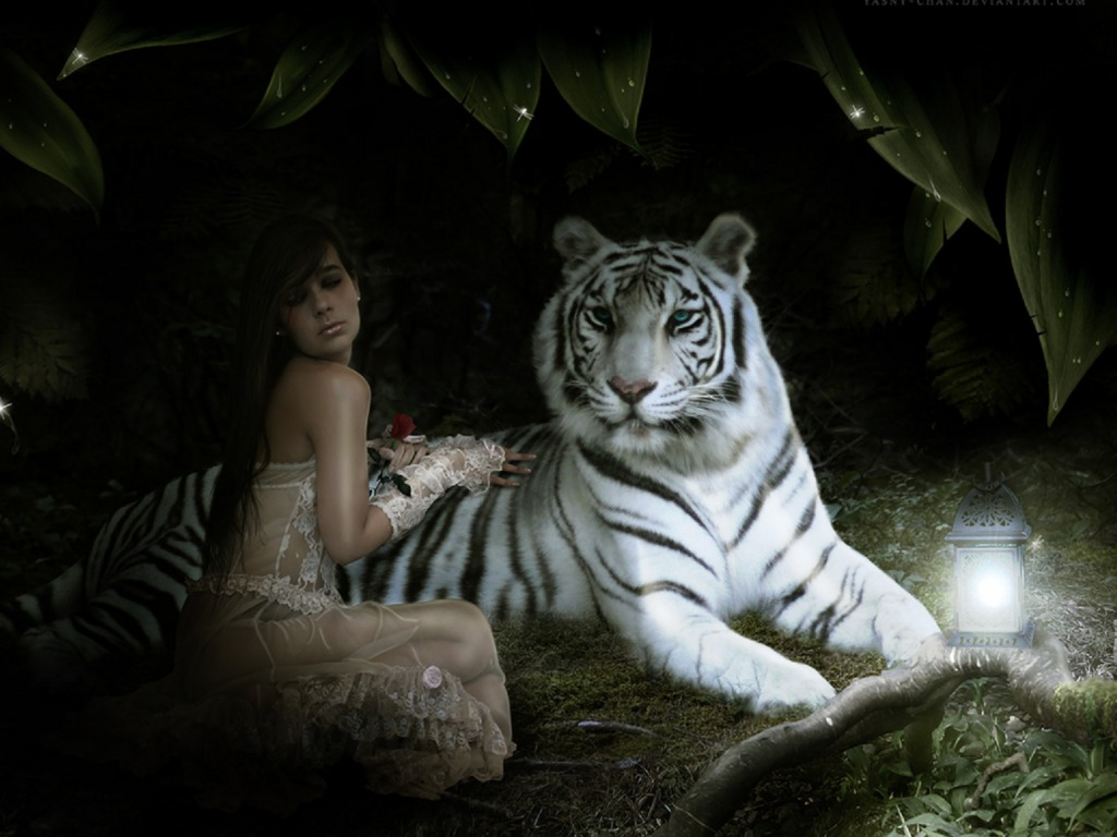 Beautiful Wallpapers white bengal tiger pictures 1024x768