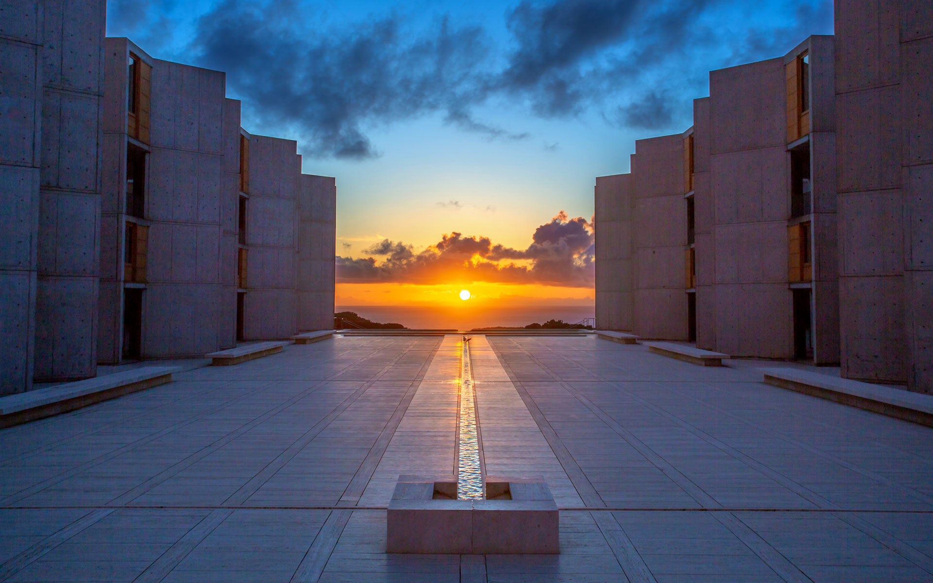 2019 March Wallpaper   Salk Institute for Biological Studies 1920x1200