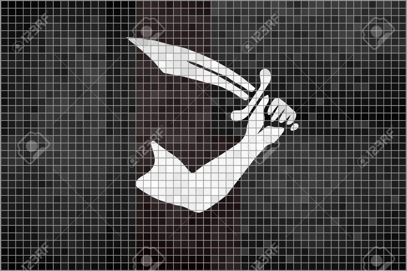 Pirate Flag   Illustration Thomas Tew Pirate Mosaic Textured 1300x868