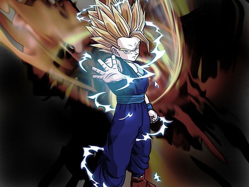 son gohan dragon ball z HD Wallpaper   Anime Manga 862953 800x600