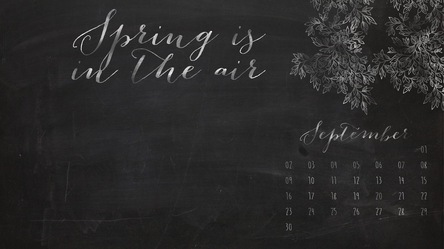 Chalkboard Beauties Desktop Wallpaper 1772x996
