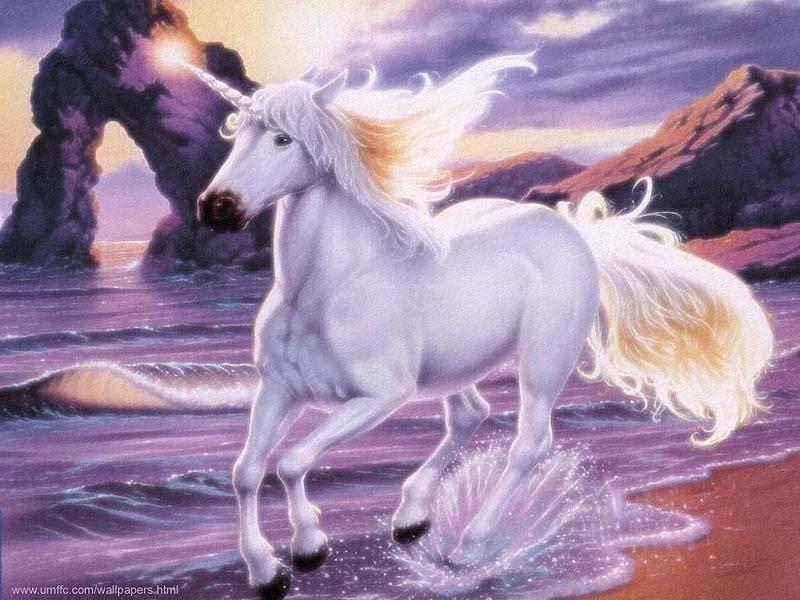 Unicorn Pics Wallpaper  WallpaperSafari